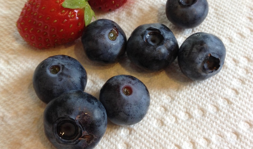 Grow Blueberries inContainers
