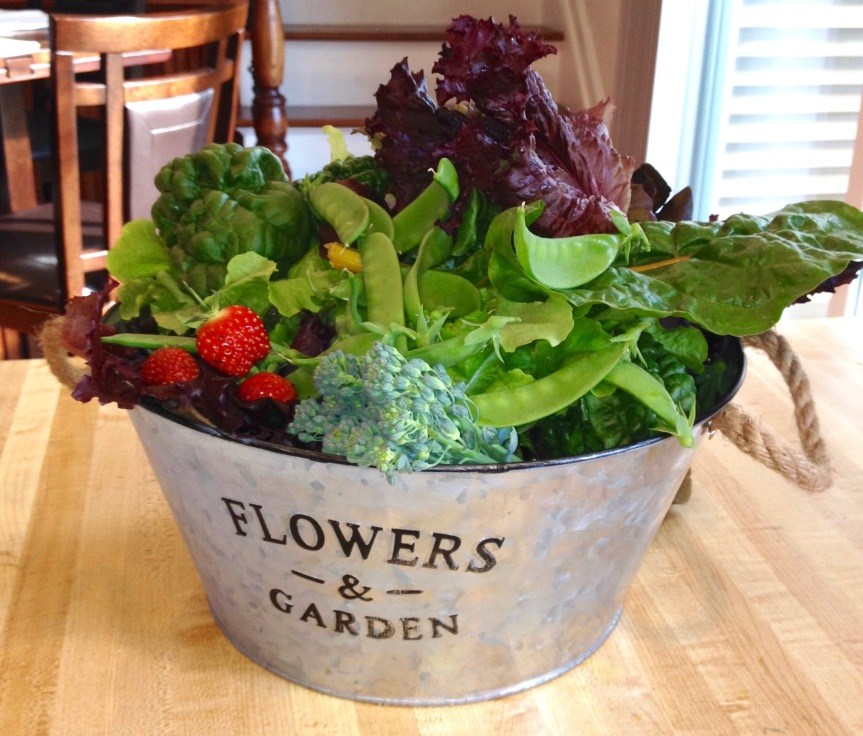 13 Terrific Reasons to Grow Your Own Food.